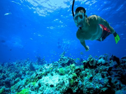 کار با اسنورکل snorkeling